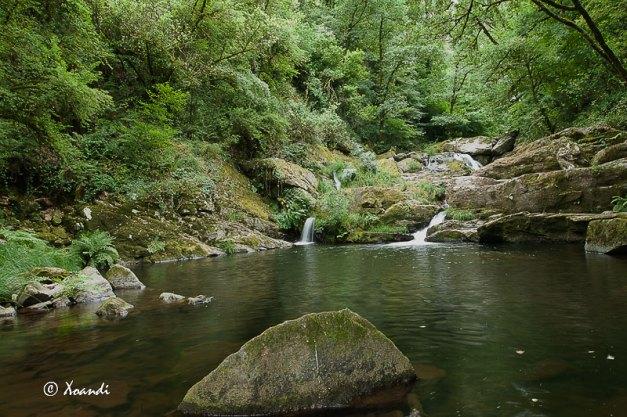 Río Toxa (Galicia)