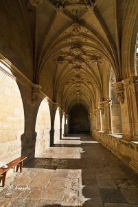 H.MonasterioSanZoiloCarrión(Palencia)6