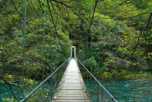 Puente sobre el rio Eume